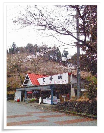 2011-04-21 奥武蔵グリーンライン 119