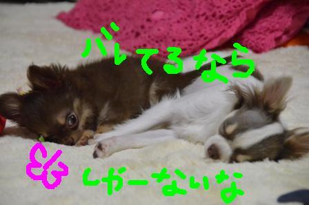 DSC_4085.jpg