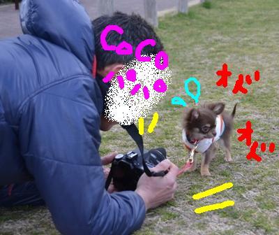 DSC_4466.jpg