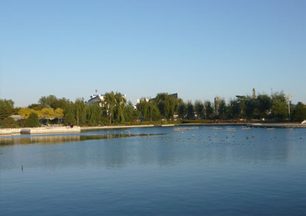 20081108-2.jpg