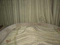毛布の下は Chiffon