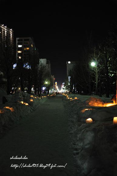 ゆきあかり 中島公園