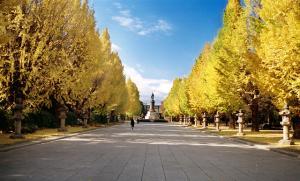 秋の靖国神社