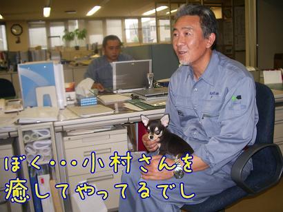 小村さんと大二郎