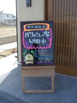 3_20110219174741.jpg