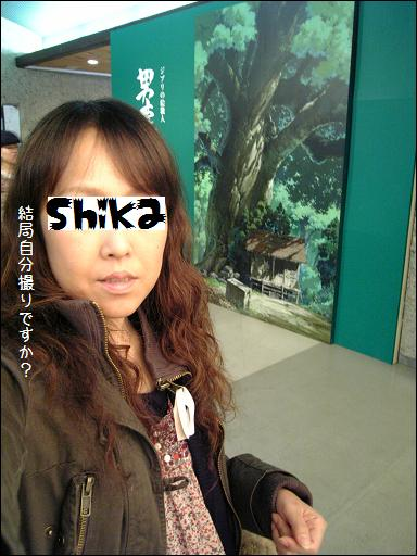 VFSH2105a.jpg