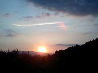 20080812_3.jpg