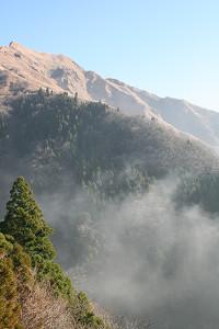 200812163.jpg