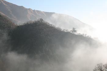 200812164.jpg