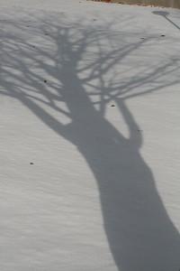 200901102.jpg