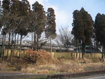 2009011910.jpg
