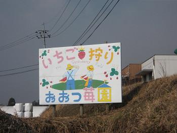 2009011911.jpg