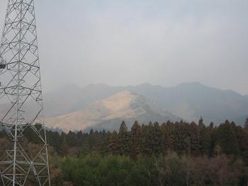 200901193.jpg