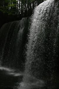 200907244.jpg