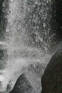 200907246.jpg