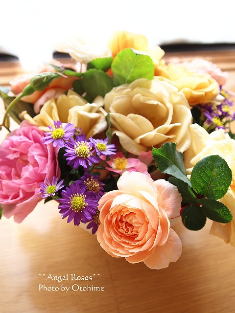 043お庭のバラ達