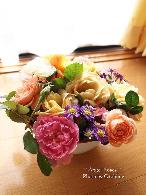 041お庭のバラ達