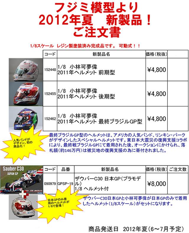 helmet120330-1.jpg