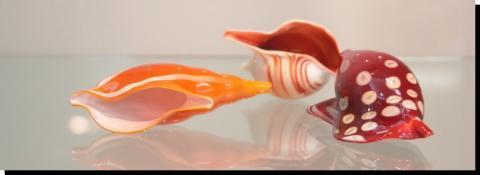 潮の香りがする ガラスの貝殻・・・