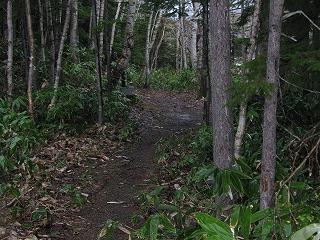 不動の滝コース内