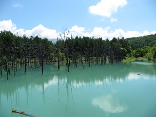 7.14 青い池