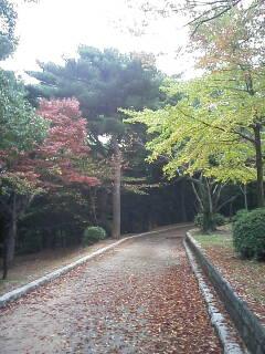2008-11-08_13-28.jpg