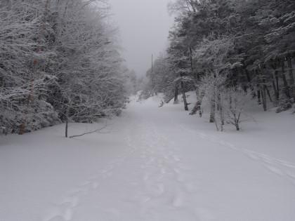 雪山らしく