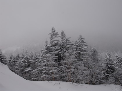 山頂は雲の中