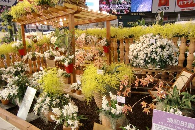 奨励賞 須和田農園「蘭庭園」