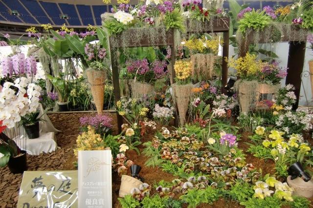 優良賞 みやぎ洋蘭友の会「夢の庭」