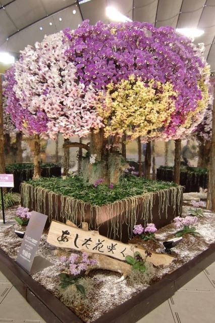 椎名洋ラン園「あした花咲く」