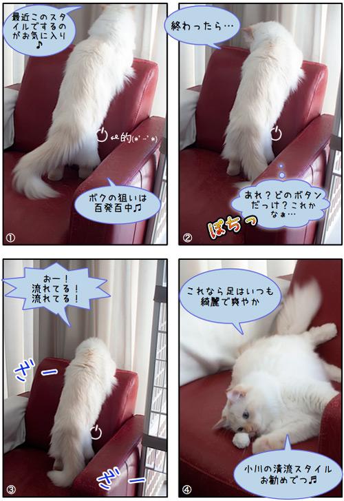20110715_omake.jpg