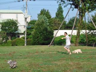 2008 08 03お散歩11