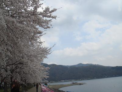 s-河口湖(6)