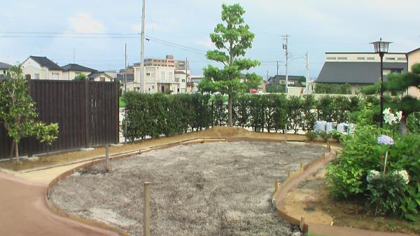 ベントグリーン床土作り
