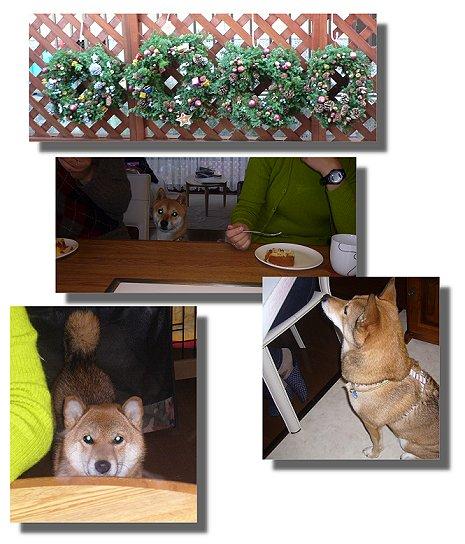2007.12.20.2.jpg