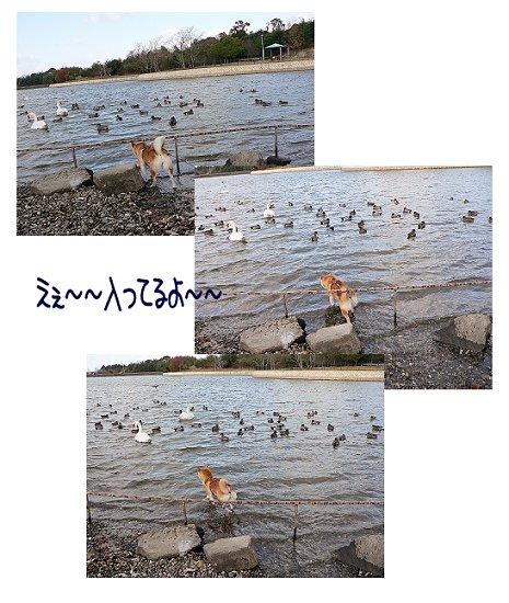 2007.12.29.4.jpg