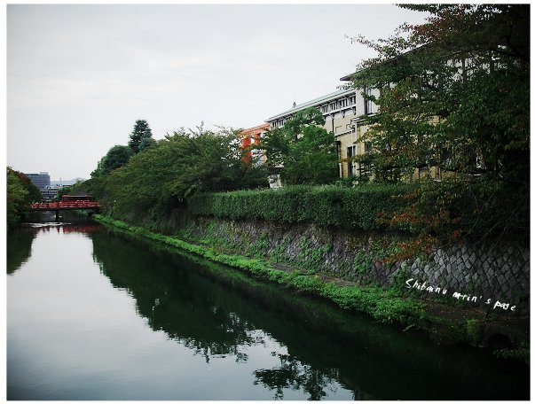 2010253.jpg
