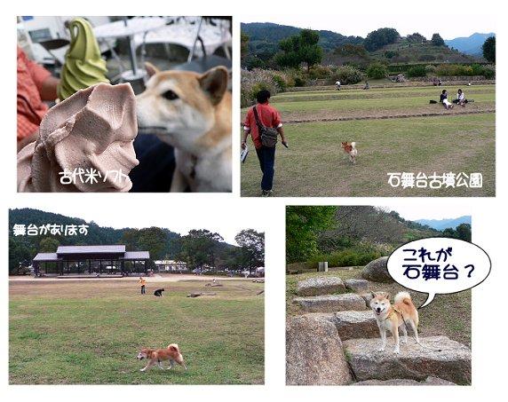 asuka5.jpg
