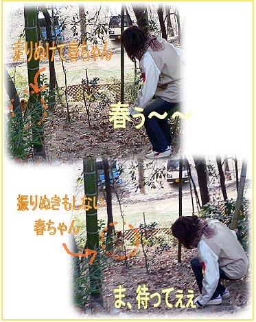 inariyama10.jpg