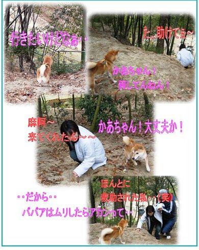 inariyama11.jpg