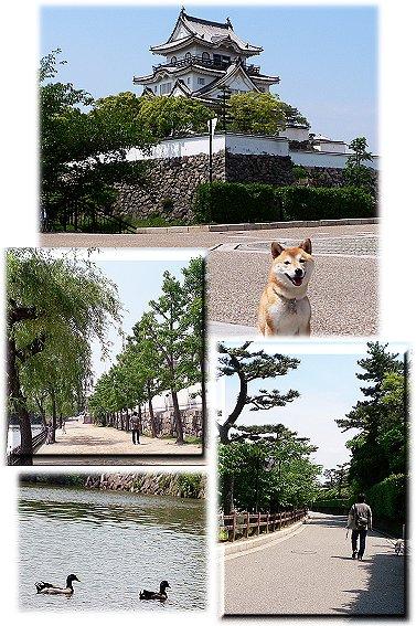 kisiwada2.jpg