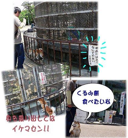 kisiwada4.jpg