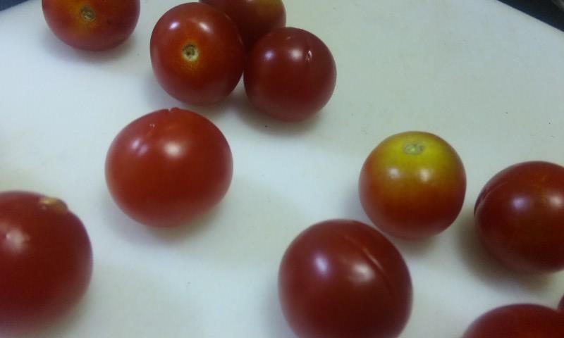 ミニトマト切れ込み
