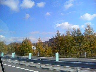 20081101131535.jpg