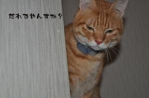 12.06星ヶ丘9