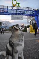 12.11木曽三川
