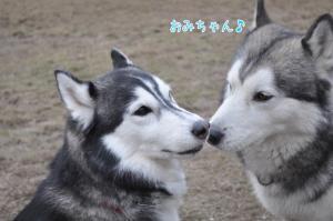02.05愛ハス6