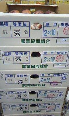 misaka1.jpeg