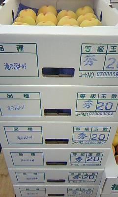 takinosawa2.jpg